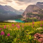 Mountain Flowers Lake Scenery Wallpaper