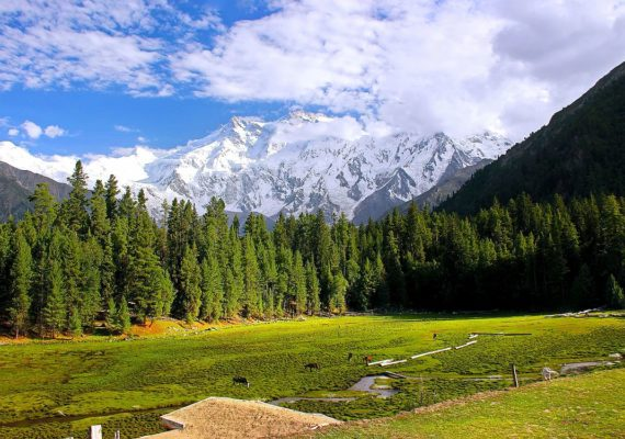 1200px Fairy Meadows Pakistan
