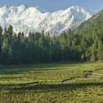 View of Nanga Parbat from Fairy Meadows National Park